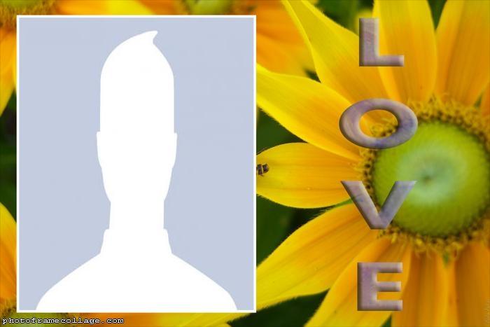 Sunflower Love Collage