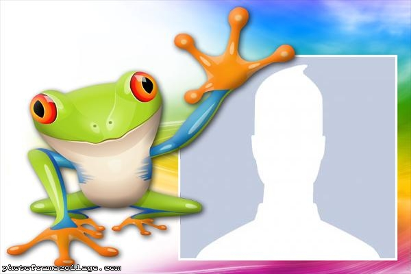 Colorful Toad Photo Collage