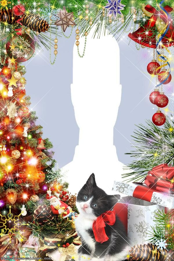 Black Christmas Cat