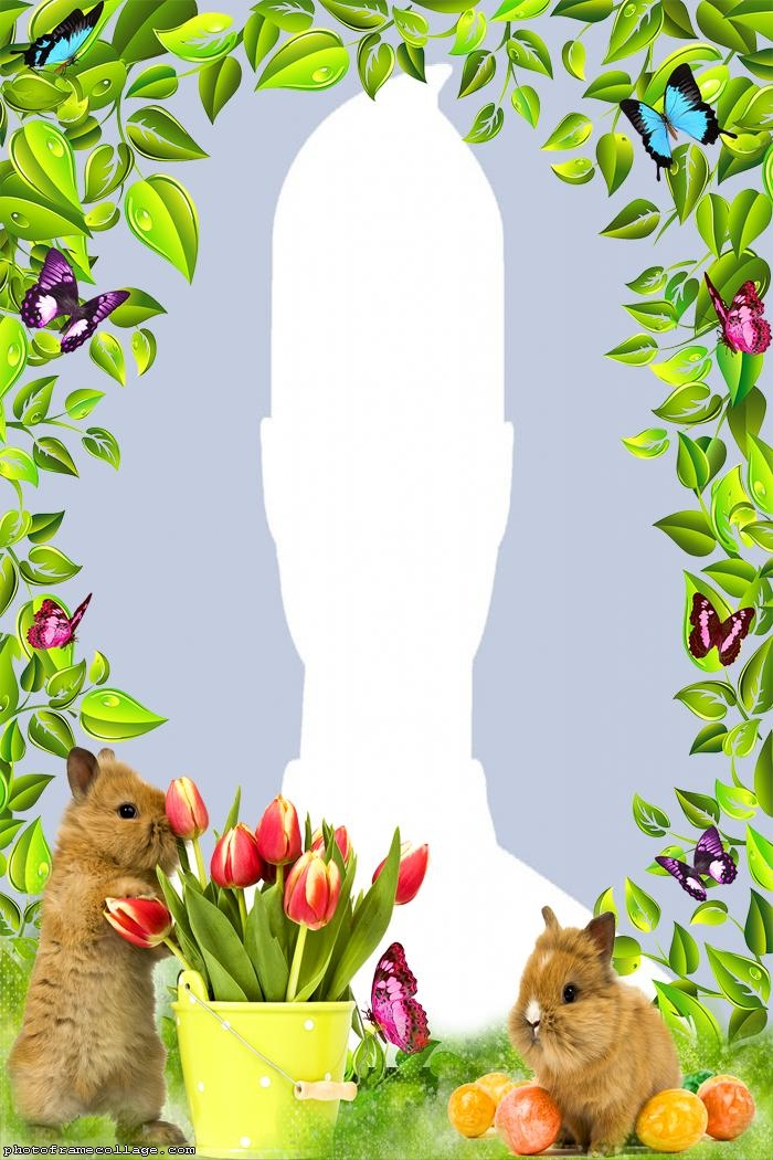 Real Easter Rabbits Photo Frame