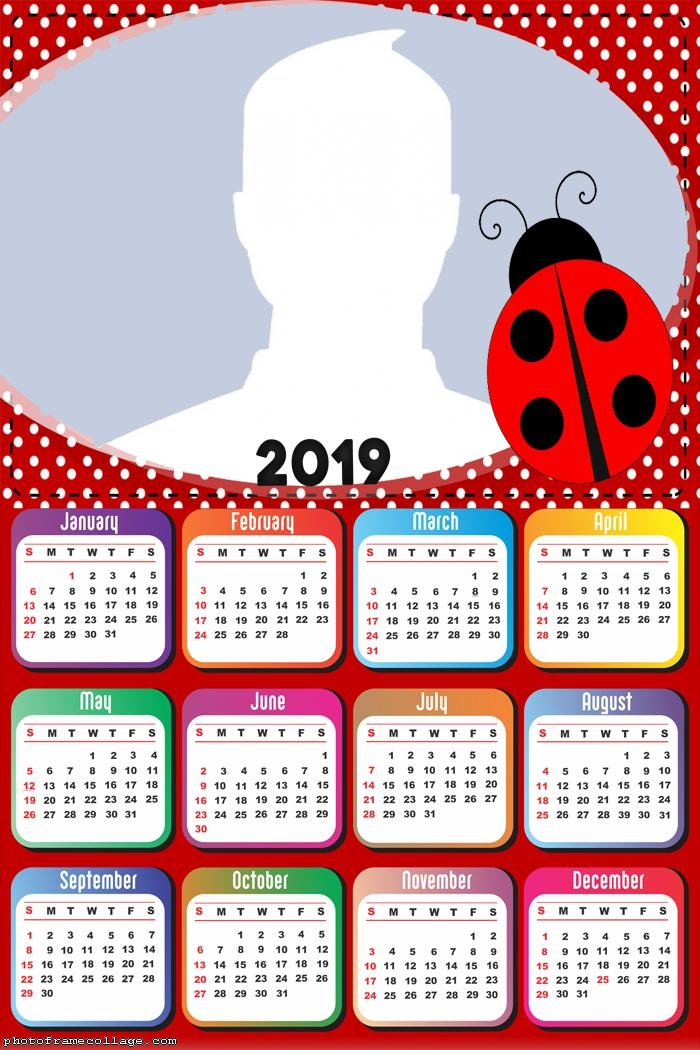 The Lady Bug Calendar 2019