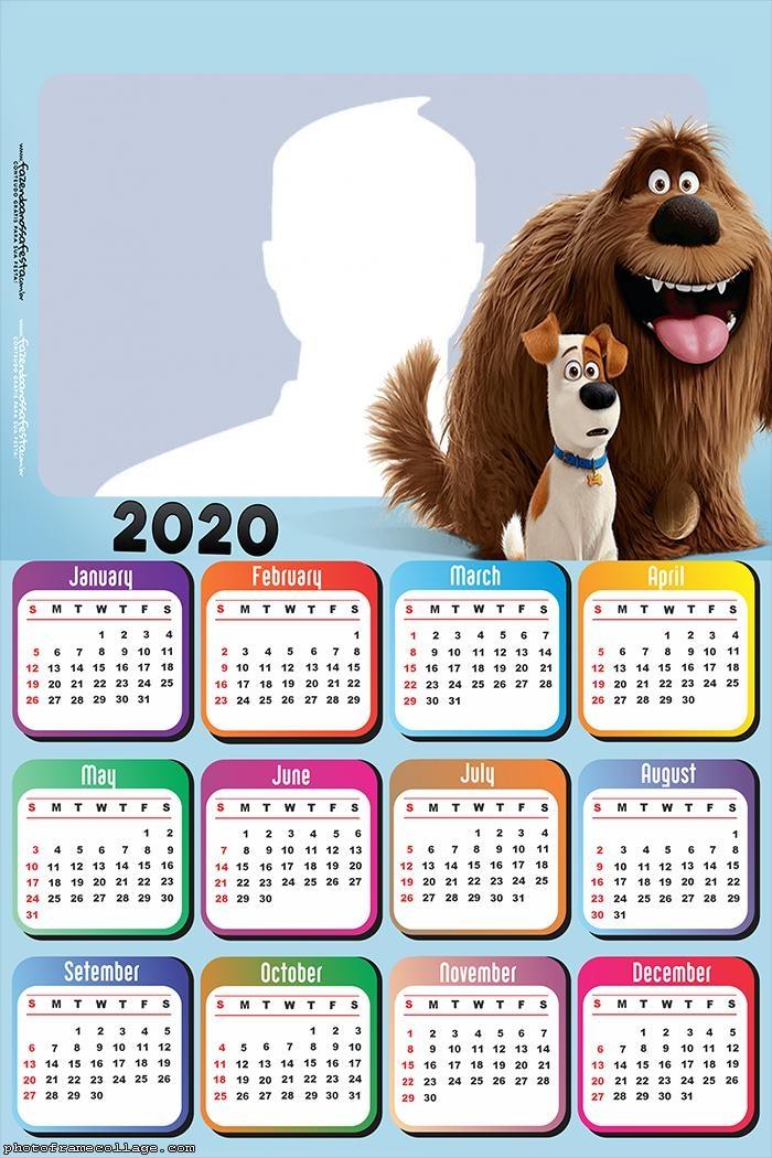 The Secret Life of Pets Calendar 2020