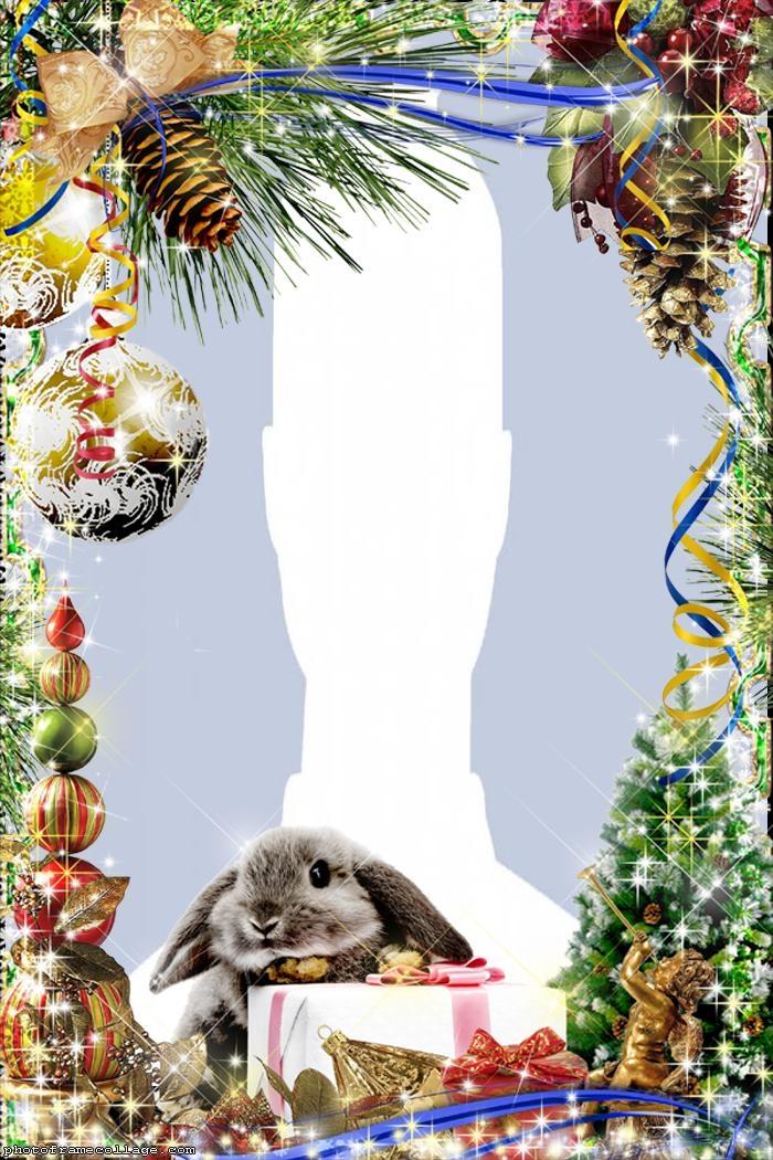Christmas Rabbit Photo Collage