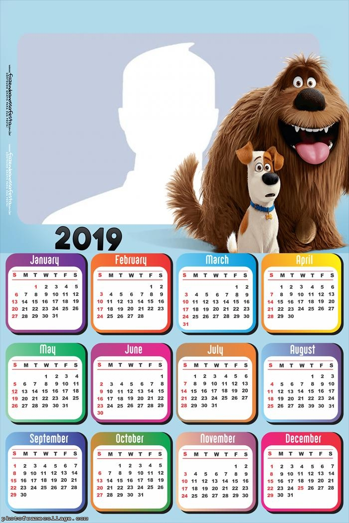Pets The Secret Life of Pets Calendar 2019