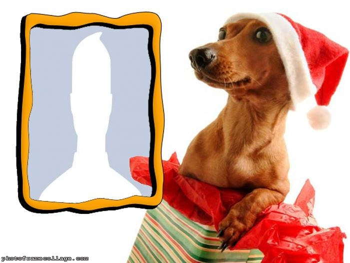 Santa Dressed Puppy Make a Photo Collage