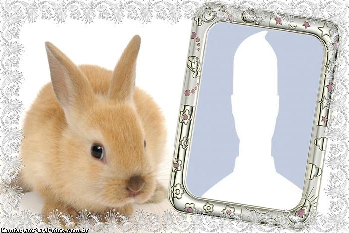Easter Bunny Frame Online