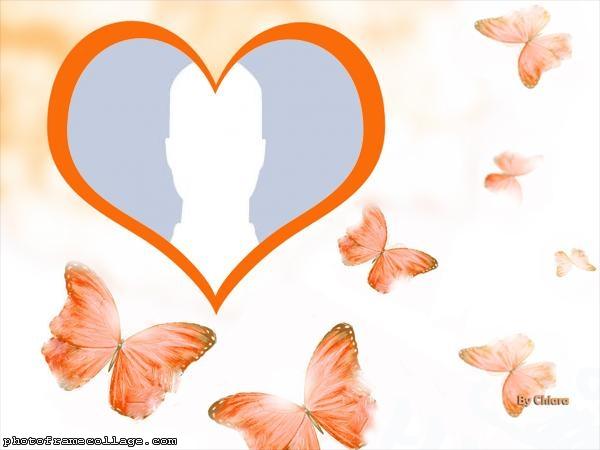 Orange Butterflie Collage Photo