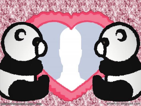 Pandas Couple Picture Collage
